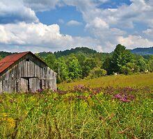 Ironweed & Barn by Nicole  McKinney