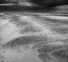 The Time of Sands by Andy Freer