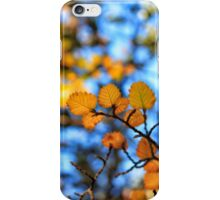 The Whole Reason_Cradle Mountain iPhone Case/Skin