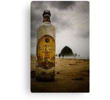 oddly enough this doesn't look like a recycle bin to me.... just sayin... Canvas Print