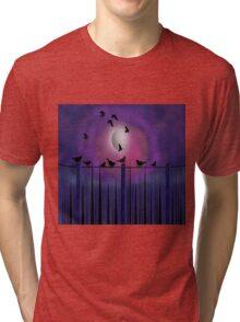 Birds On A Wire Tri-blend T-Shirt