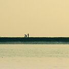 Kaladan River, as wide as horizon itself by Brian Bo Mei