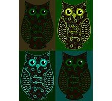 Earthy Floral Owls Patchwork Photographic Print