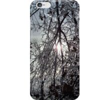 Subdued Winter Sun, Late Afternoon iPhone Case/Skin