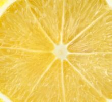 Lemon slice with leaves Sticker