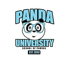 Panda University - Blue Photographic Print