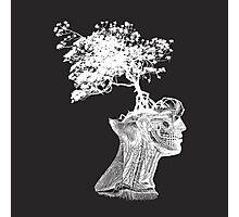 Tree of Knowledge Photographic Print