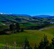 Foothills of the Southern Alps by ijam357