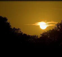 The Golden Hour by strangephoenix