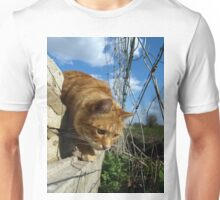 On a mouse hunt Unisex T-Shirt