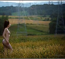 Field of Dreams by MagiccImagery