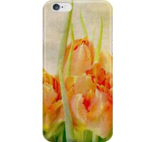 Haarlem dreaming ... iPhone Case/Skin