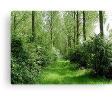 Littleport river trees Canvas Print