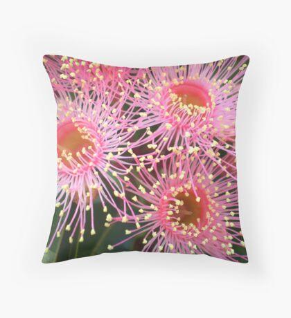 Tiny pink flower of the Eucalyptus Tree Throw Pillow