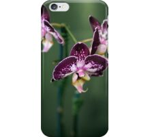 Purple Orchids iPhone Case/Skin