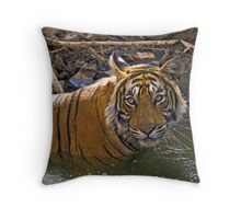 Bengal Tiger (Panthera tigris) Throw Pillow