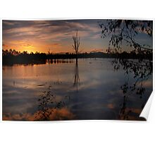 Wonga Wetlands sunset Poster