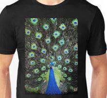 Vanity Has a Thousand Eyes Unisex T-Shirt