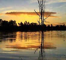 Albury Wonga Sunset. by Petehamilton