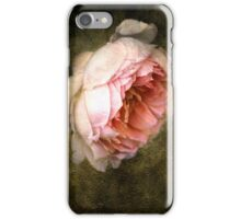 Summer's last rose iPhone Case/Skin