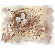 Eggs with a conscience Poster