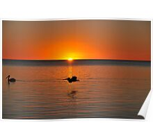 Sunset at Karumba Queensland Poster