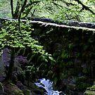 The Hermitage, Argyll by BronReid