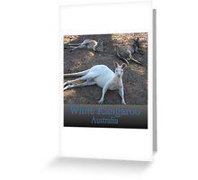White Kangaroo Greeting Card
