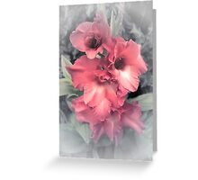 Gladiolus (Flowers collection) Greeting Card