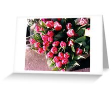 bouquet of pink tulips,Berkeley,ca Greeting Card