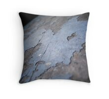 Aged paint - Dachau Throw Pillow