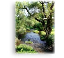 Water and Willow Canvas Print