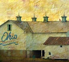 Old Ohio by Gayle Dolinger
