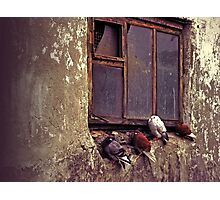 Four winged musketeers before inbreak the Bastille Photographic Print