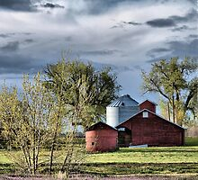 Old Mr. Jones Once Had A Farm by Barb Miller