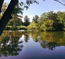 Bosworth park, Hinckley Leicestershire, Nokia 6700. by ADzArt