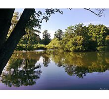 Bosworth park, Hinckley Leicestershire, Nokia 6700. Photographic Print