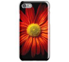 RED CHRYSANTHEME iPhone Case/Skin
