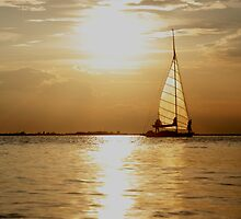 Sailing Dream by Johannes Bildstein