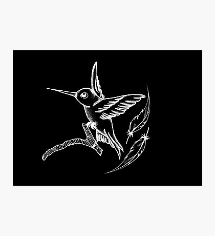 Hummingbird Black Photographic Print