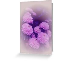 Astra (Flowers collection) Greeting Card