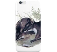 The Parma wallaby painting iPhone Case/Skin