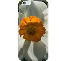 Spring Sunshine and Blooms iPhone Case/Skin