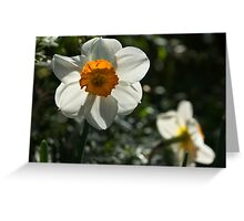 Spring Sunshine and Blooms Greeting Card