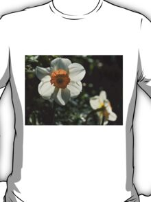 Spring Sunshine and Blooms T-Shirt