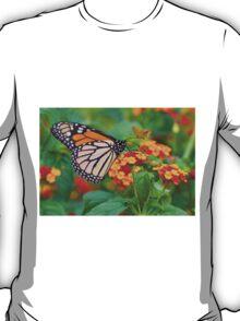 Royal Butterfly T-Shirt