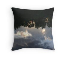 Sunset in the Pond Throw Pillow