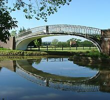 The Iron Bridge, Braunston Turn. by Roy  Massicks