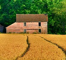 Follow The Yellow Wheat Road by Monte Morton