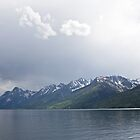 Teton Mountains by Kim Barton